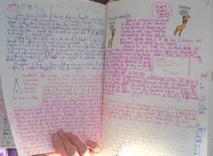 Another example of writing in Deborah's journals